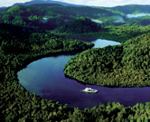 Cruise the World Heritage wilderness of the Gordon River